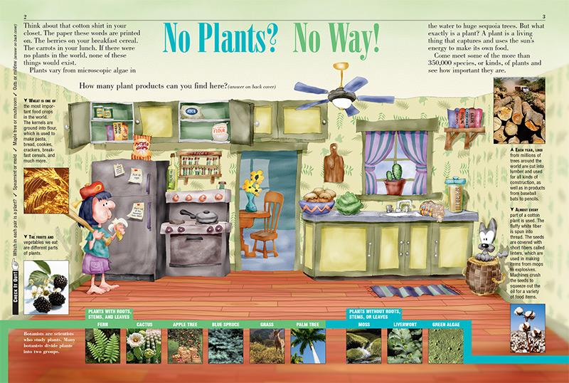 Plantas - Kids Discover