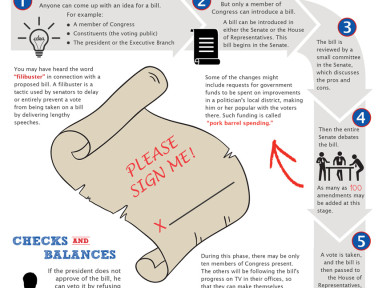 Infographic: How a Bill Becomes a Law